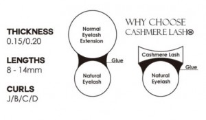 Cashmere Ellipse Lashes Diagram