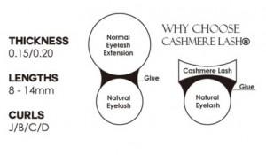 Cashmere Ellipse Lashes Diagram