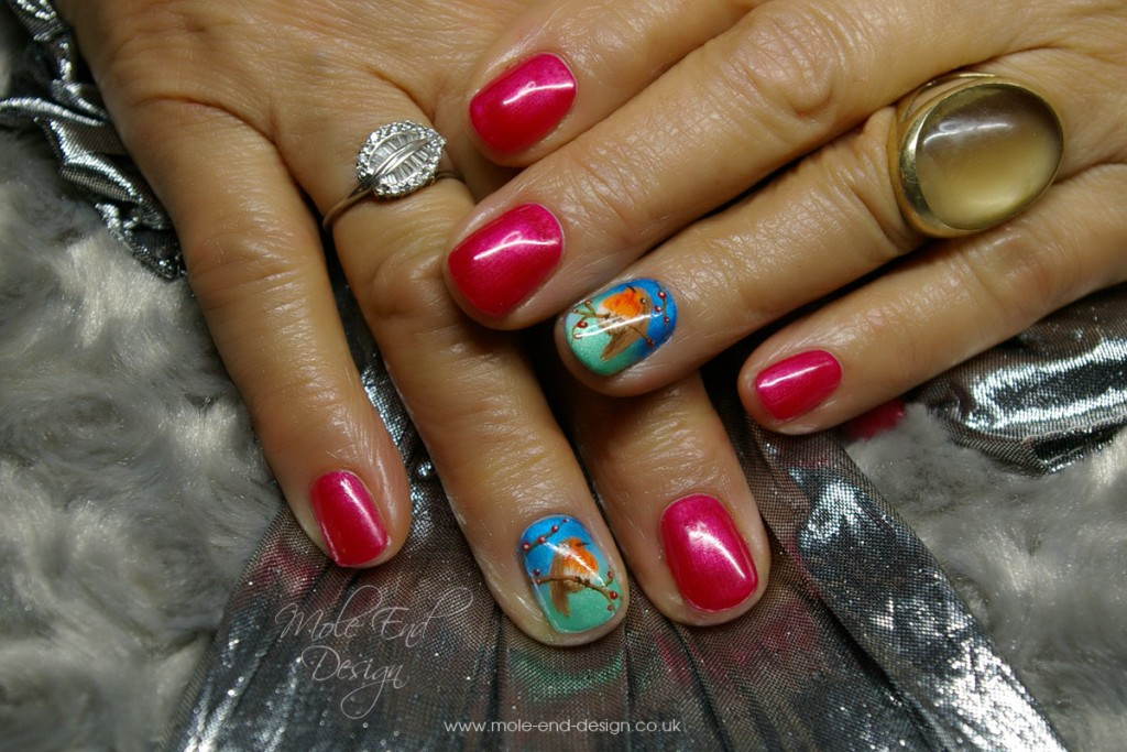 Robins on shellac